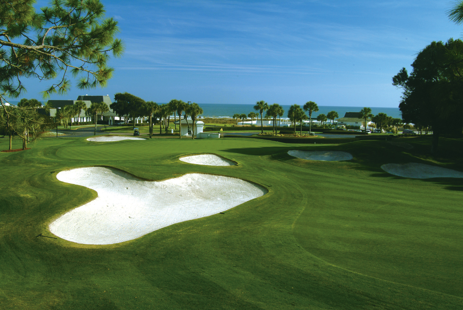 Why Myrtle Beach Tee Times Now?