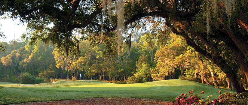 Looking to Play some Great South End Courses?