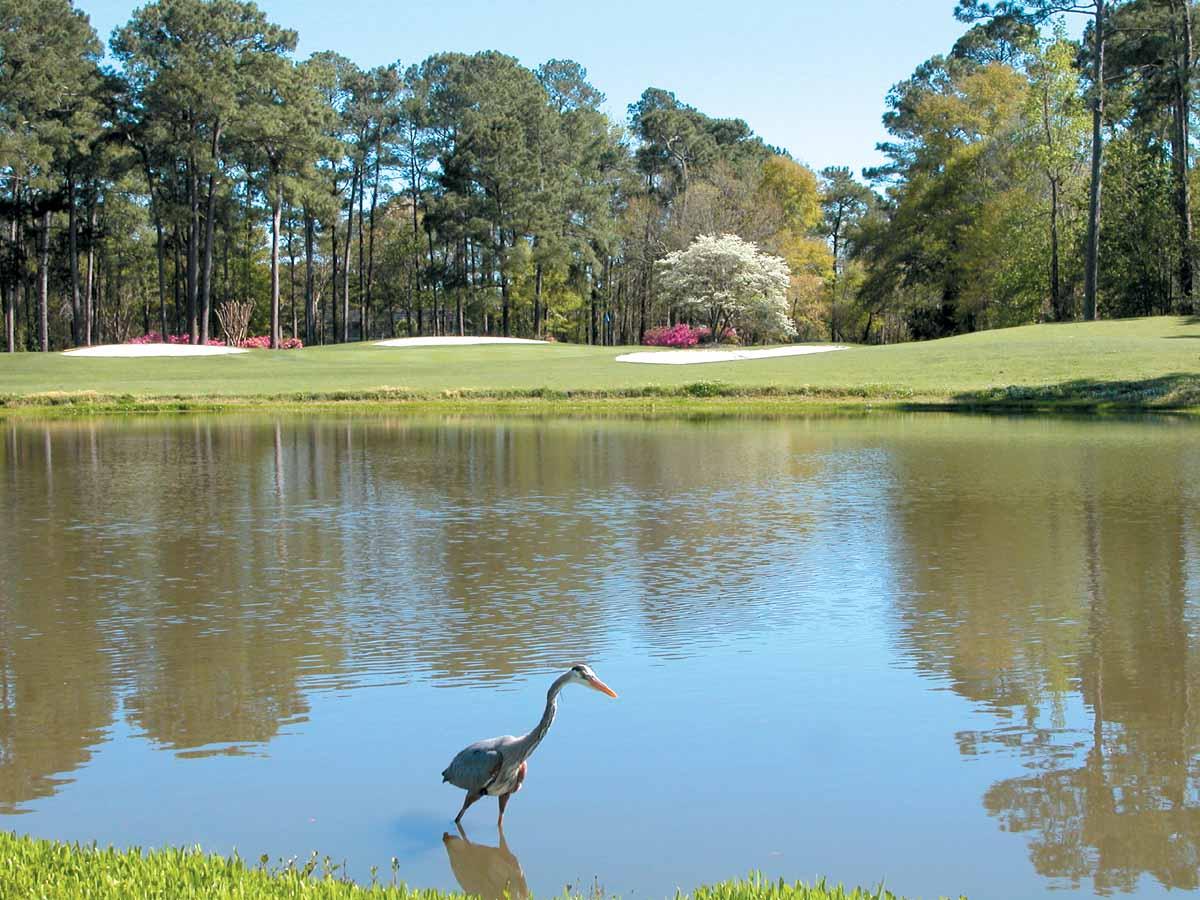Prestwick Golf Myrtle Beach Rates